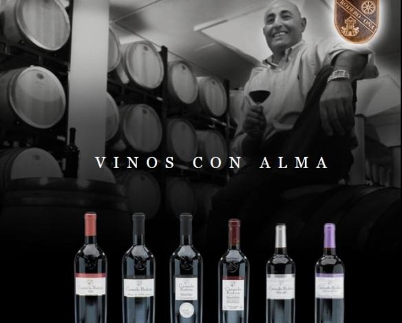 carmelo rodero_vinos singulares