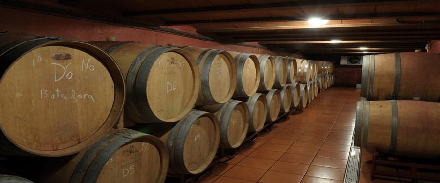 malondro_vinos singulares