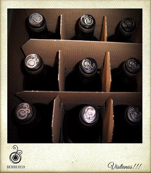 botellas6
